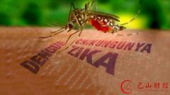 中国确诊第二例输入性寨卡病毒感染病例